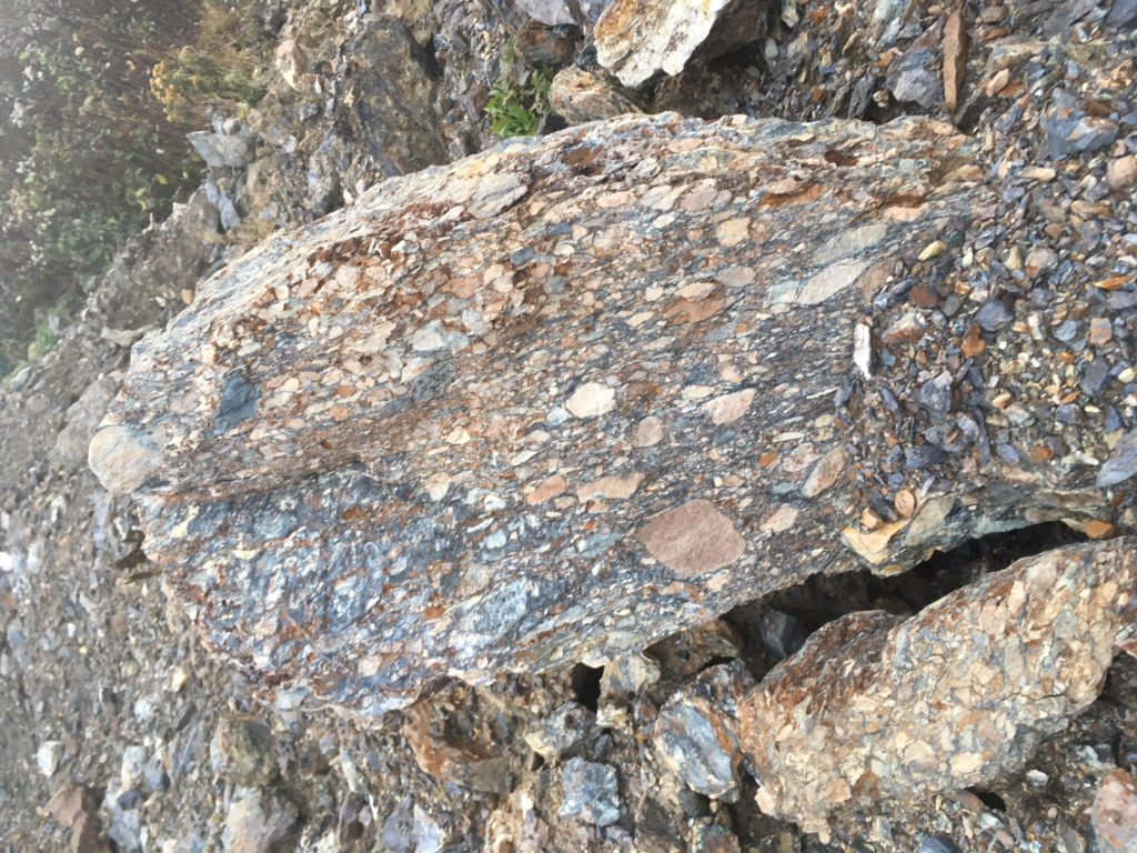 Rogerson Lake conglomerate
